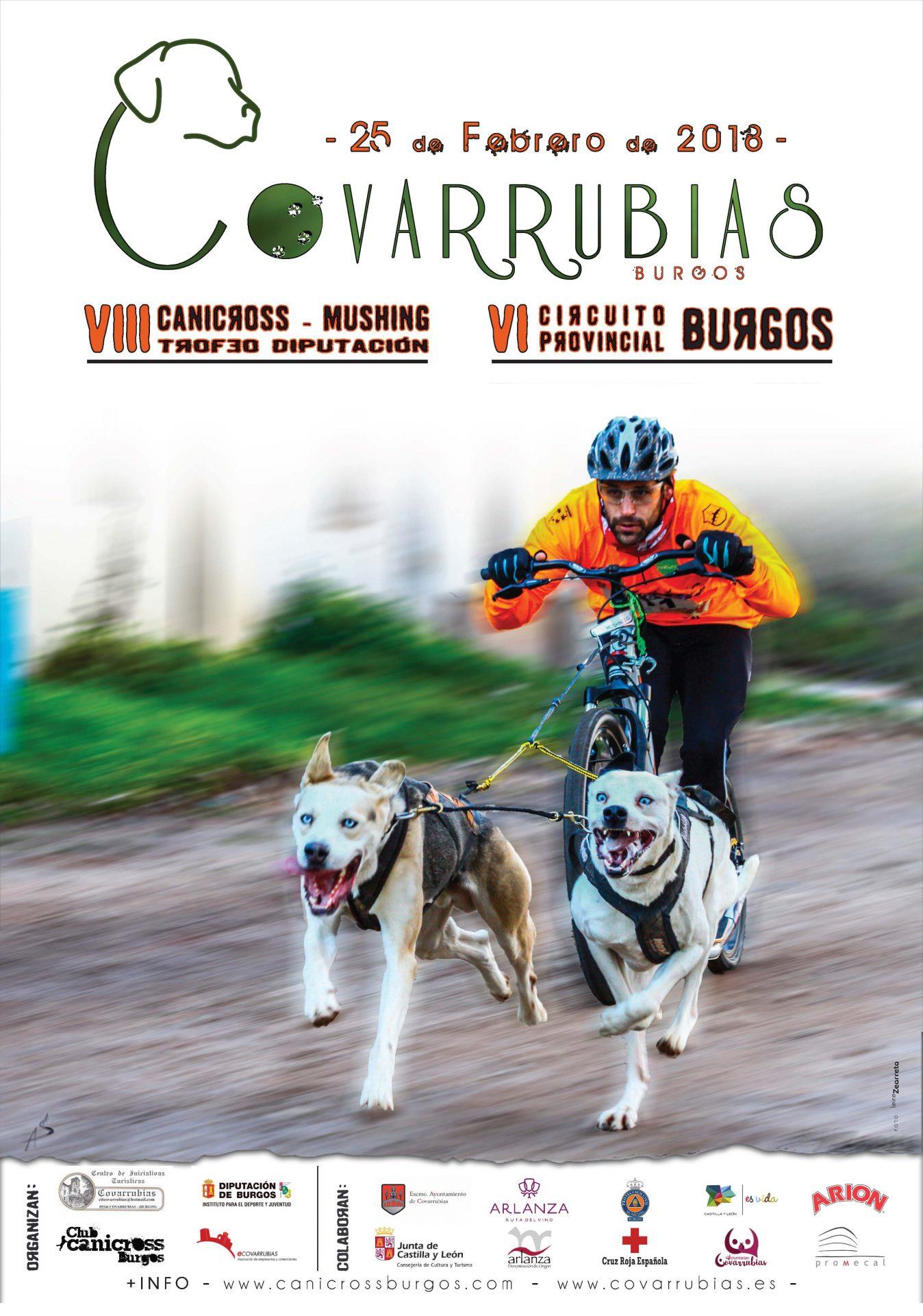 canicross covarrubias 2018